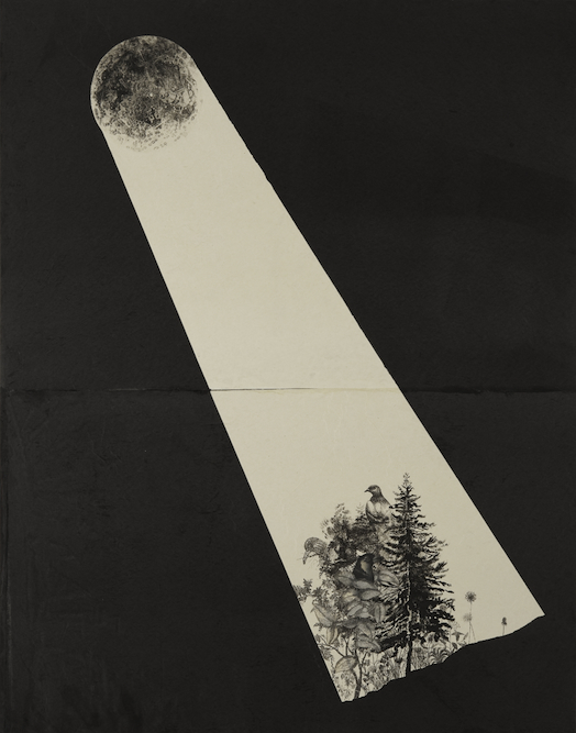 Nocturne with Pine Tree and Bird, 2009, Oil, charcoal, graphite, ink, xerox transfer and monoprint on paper laid on canvas, 56 x 44 inches