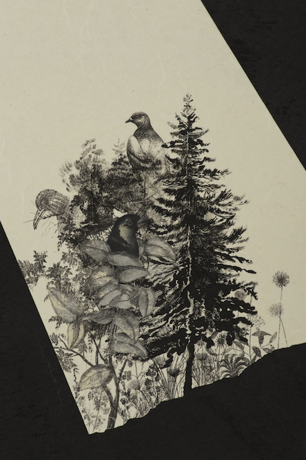 Moonbird, 2009, Oil, graphite, ink, gouache, xerox transfer, monoprint and collage on paper laid on canvas, 56 x 44 inches. Collection of Palm Springs Art Museum.