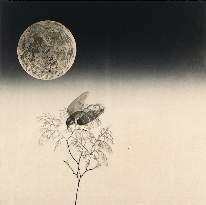 Moonbird with Tree, 2005, Ink, xerox transfer and monoprint on paper laid on canvas, 24 x 24 inches. Private Collection San Francisco.