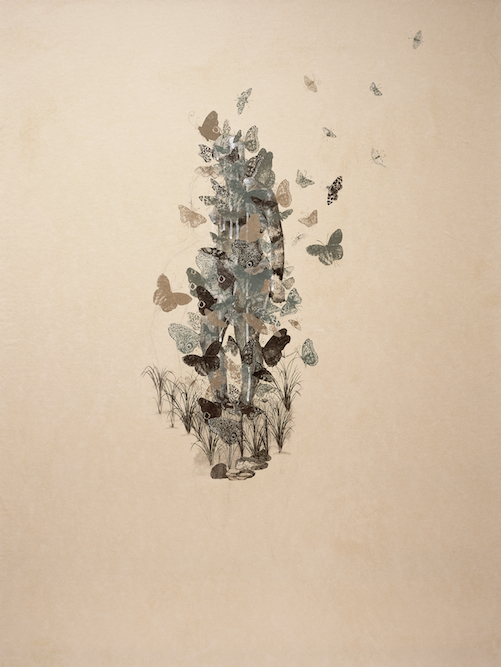Figure with Butterflies, 2005, Charcoal, graphite, ink, xerox transfer and collage on paper laid on canvas, 48 x 36 inches. Private Collection Filmore, CA.