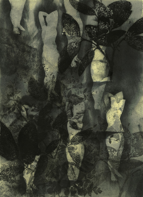 Figures with Garden, 2013 Charcoal, ink and monoprint on paper, 15 x 11 inches