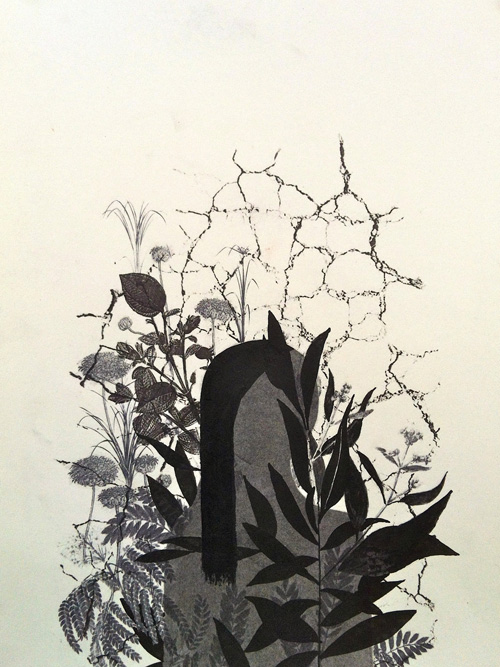 Woman with Garden, 2013 Charcoal, ink and transfer on paper, 15 x 11 inches