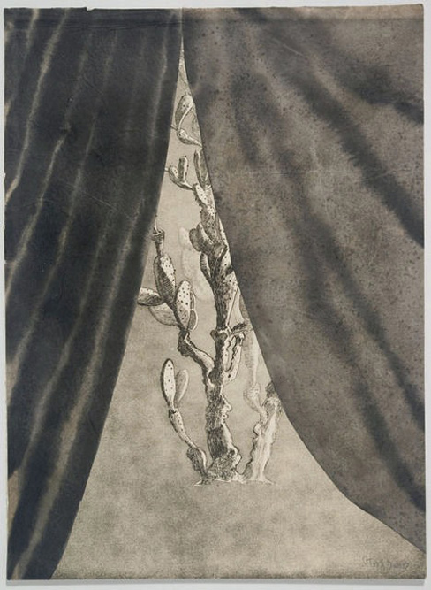 Cactus with Curtain, 2010 Ink and etching on paper, 15 x 11 inches