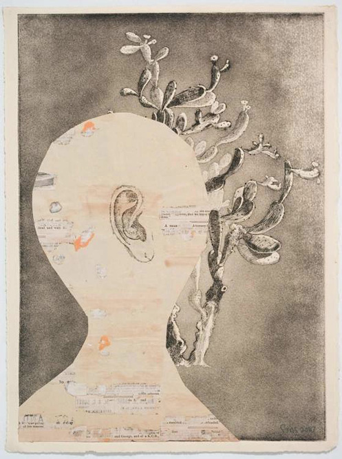 Head with Cactus, 2010 Ink, xerox transfer and etching on paper, 15 x 11 inches