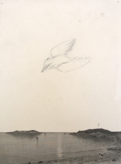Lakebird, 2004 Graphite and collage on paper, 10 x 7 1/2 inches