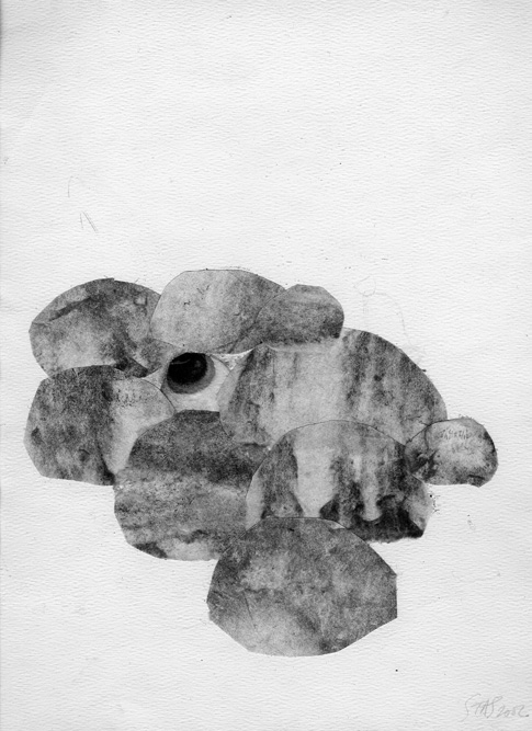 Eyeball with Stones, 2002 Charcoal, conte and collage on paper, 12 x 9 inches