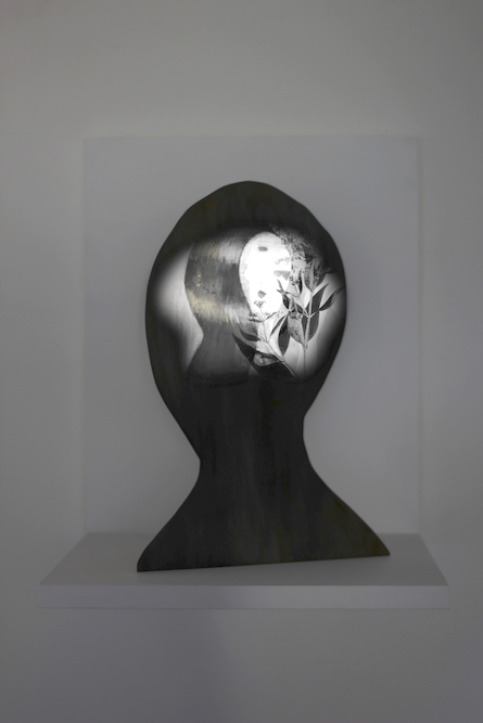 Head, 2015. Projected animation on bronze, with wood shelf. Duration: 24:30 (Loop). Edition of 7 with 1 Artist Proof. Post-production by Beau Leduc.