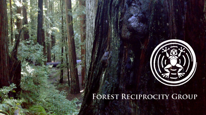 The  Forest Reciprocity Group  (FRG) is located in Mendocino County, CA. FRG aims to collaborate with local communities to tend forests for health and fire resilience and in reciprocity, those local to fire improvement projects are provided with an abundance of raw materials that may revitalize bio-regional economies.