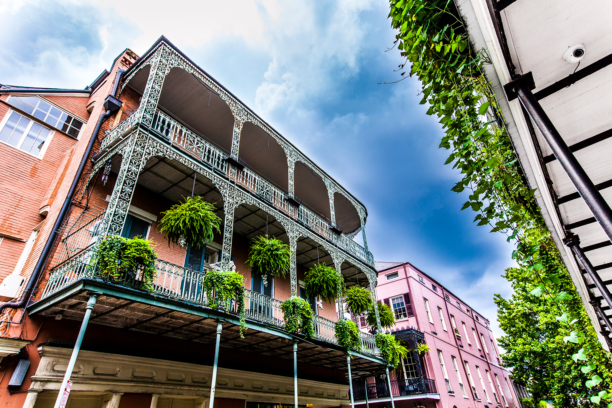 New Orleans - January 22-24, 2020   ACE Annual Meeting    Learn More