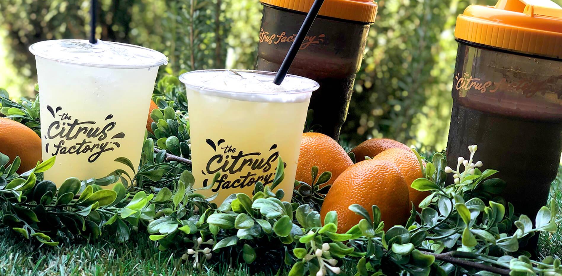 citrus factory.jpg
