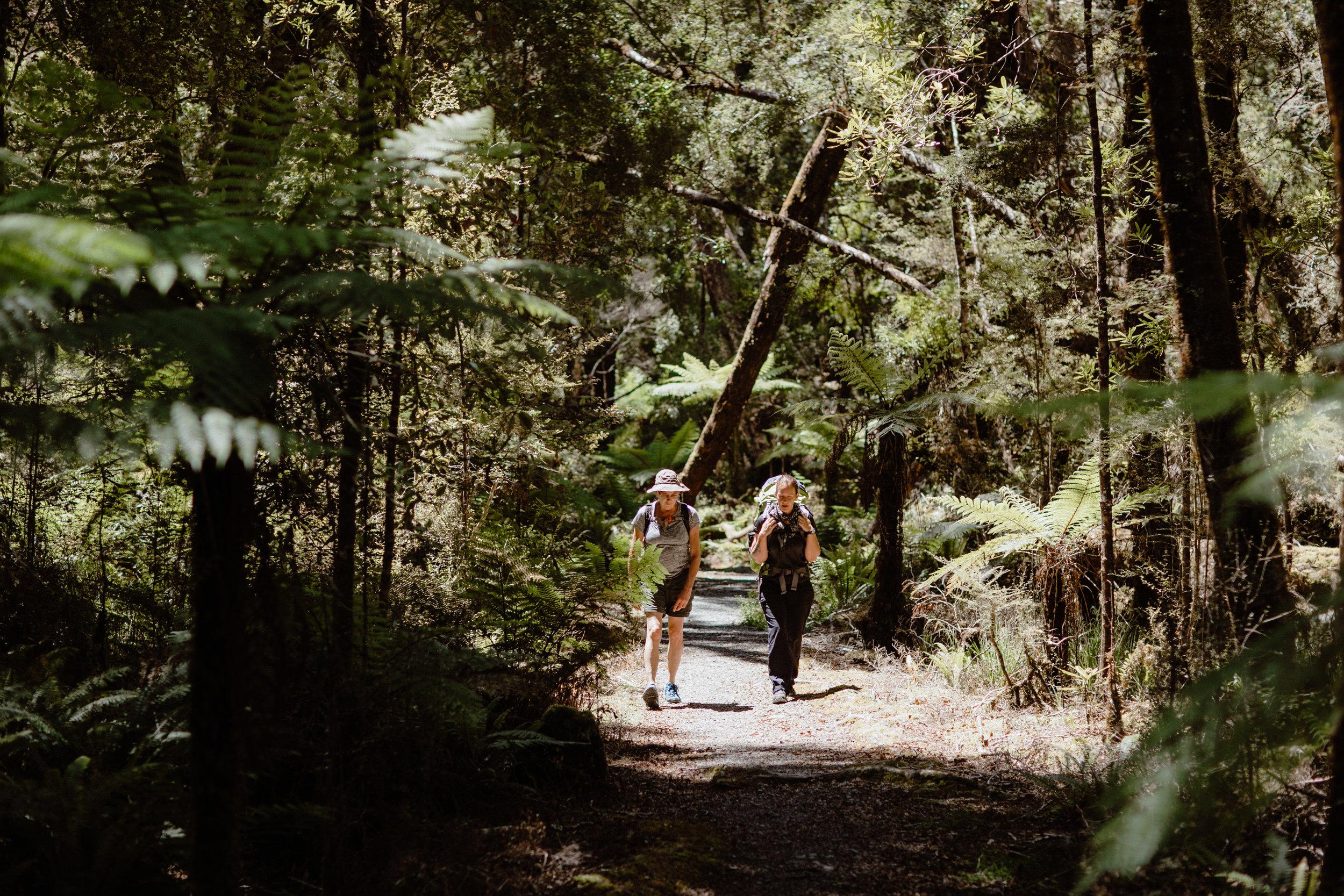 Wellness New Zealand-222.jpg