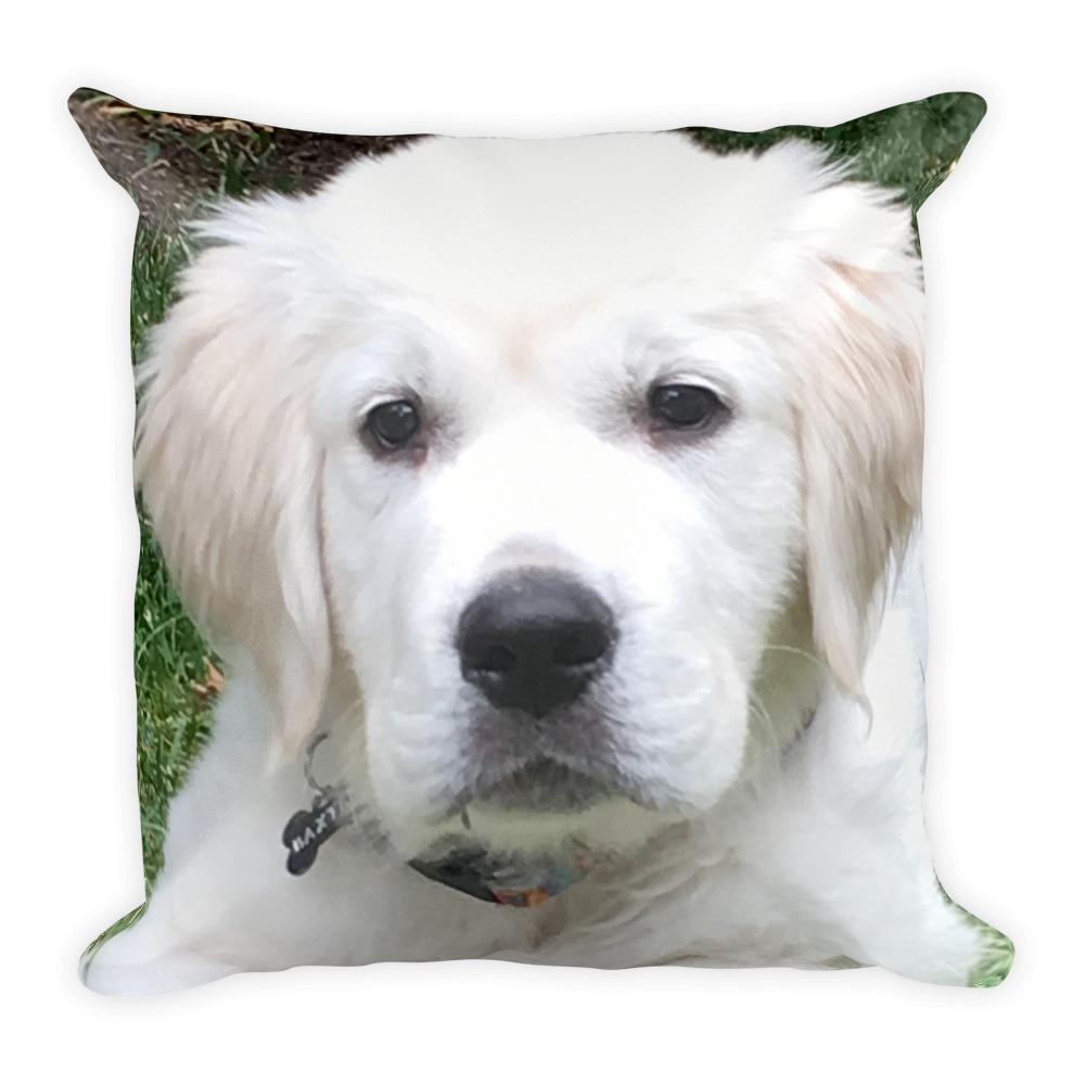 Baxter Puppy Pillow | $89.