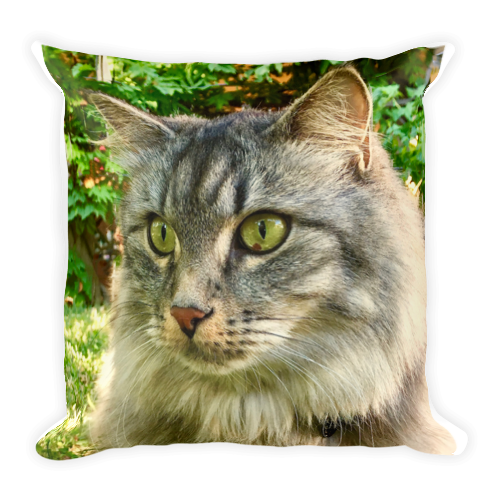 Cat Pillow | $89.