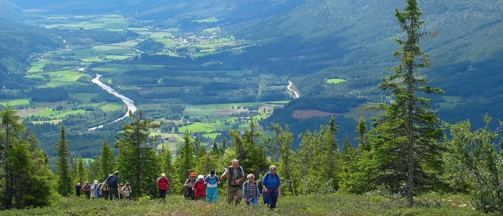 Velkommen til spennende pilegrimsvandring i vill og urørt natur langs Østerdalsledene til Trondheim -