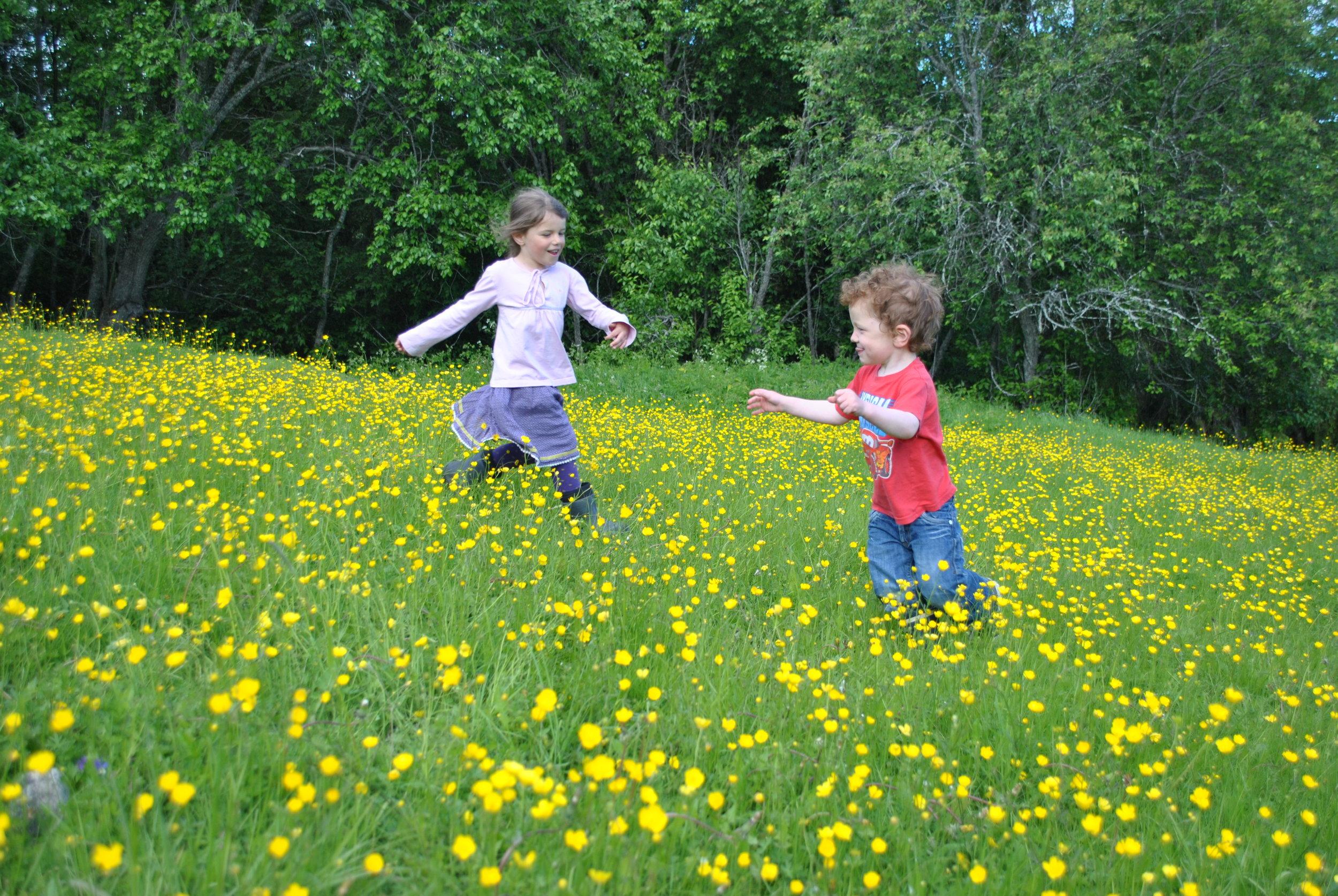 Barn & familier - Lurer du på hvordan det er å ta med barna på Lia?
