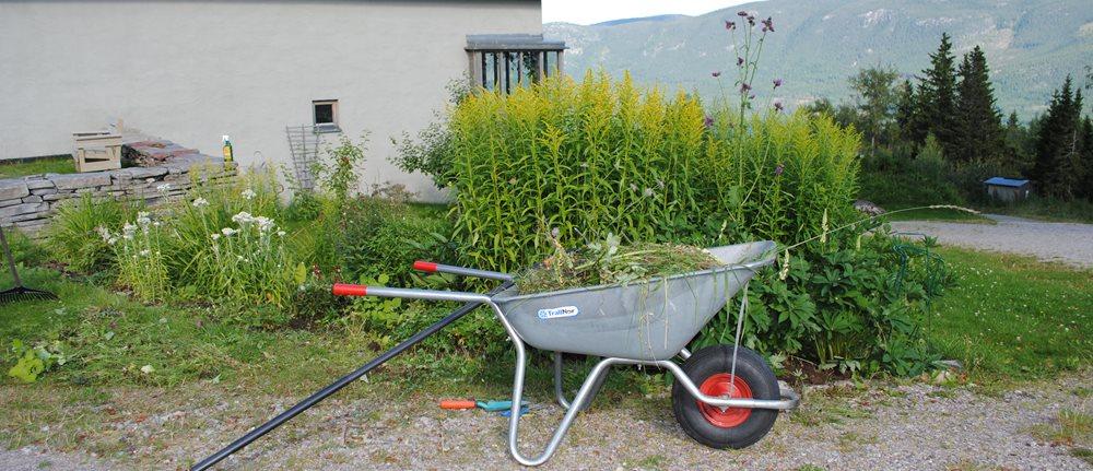 Lia gård - - i vekst og blomstring