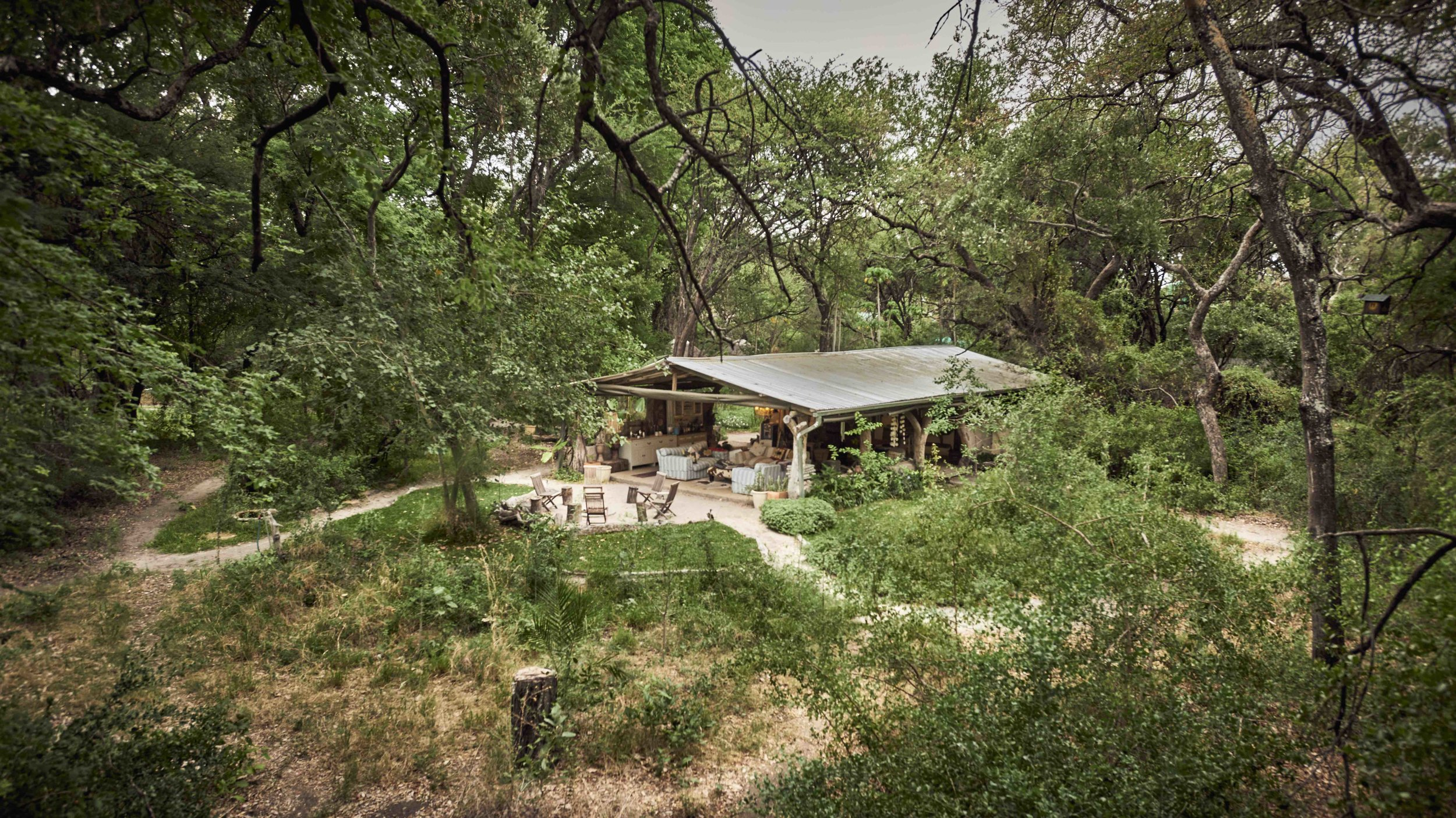 Tucked away in a secret ancient woodland on an island in the floodplains of the Okavango Delta
