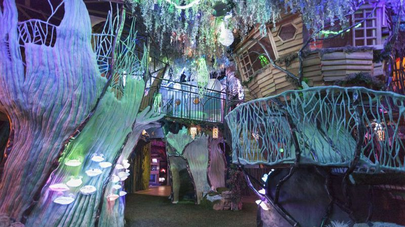 Expand Your Mind Meow Wolf