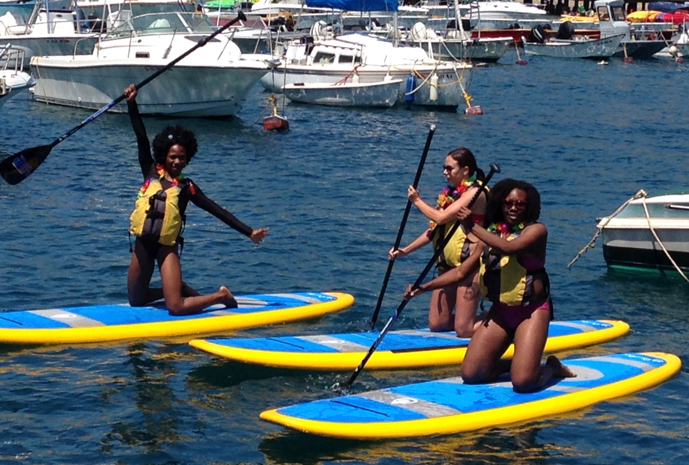 Avalon - Kayaks, Snorkel Gear andStand up Paddle Board Rentals
