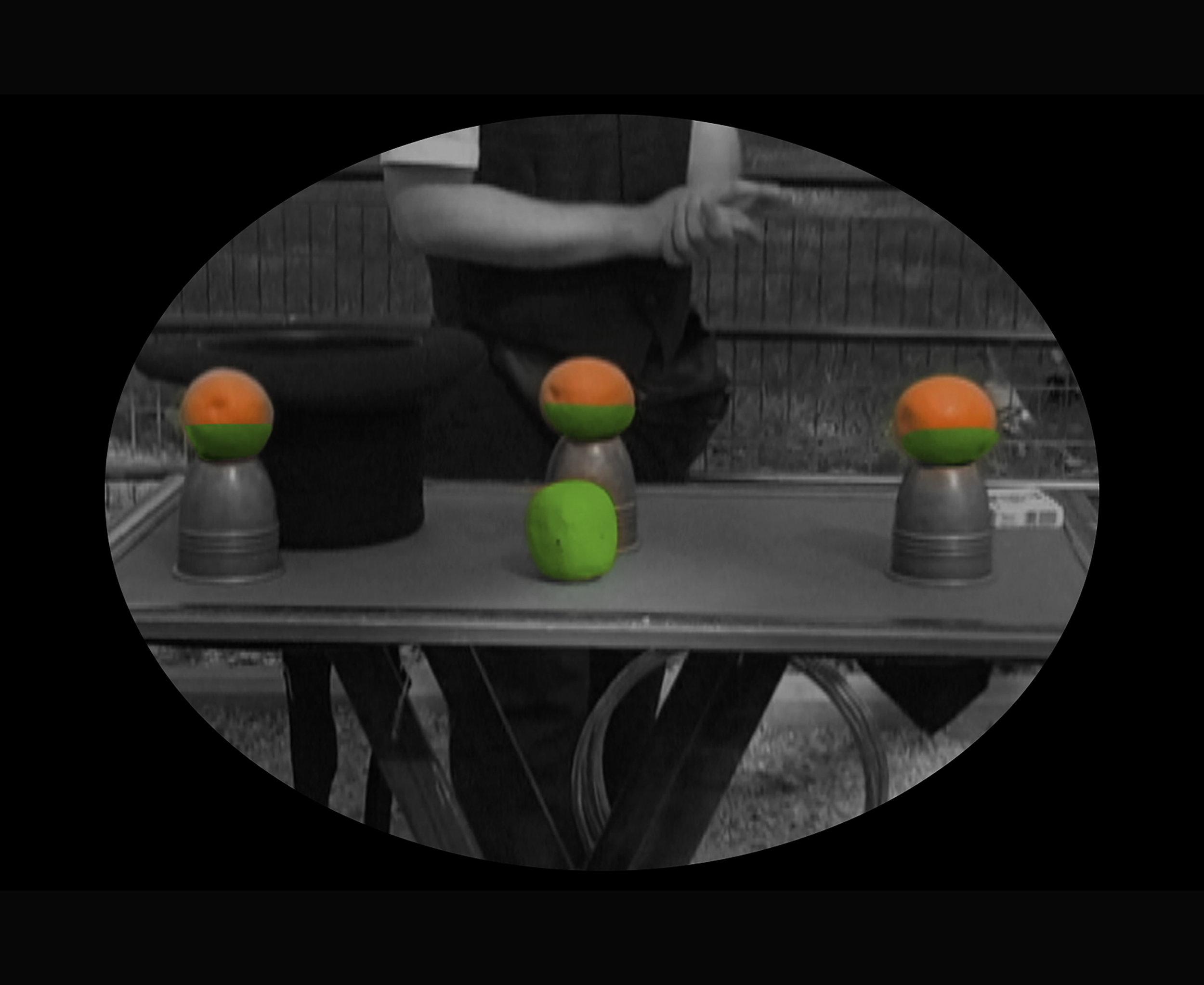 2J_Ashokan Video still magician 1 grn orange-8.jpg