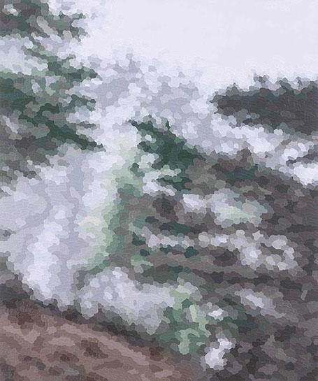 "Elaine Coombs, ""Soft Focus"", 24""x20"", acrylic on panel"