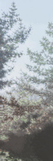 """Elaine Coombs, """"Among my Best"""", 60""""x20"""", acrylic on canvas over panel"""