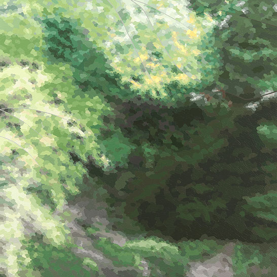"Elaine Coombs, ""Inwardly"", 36""x36"", acrylic on canvas over panel"