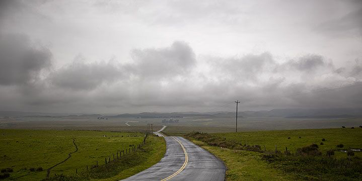"""Markham Johnson, """"Point Reyes Road 1"""", size variable to edition, photograph"""
