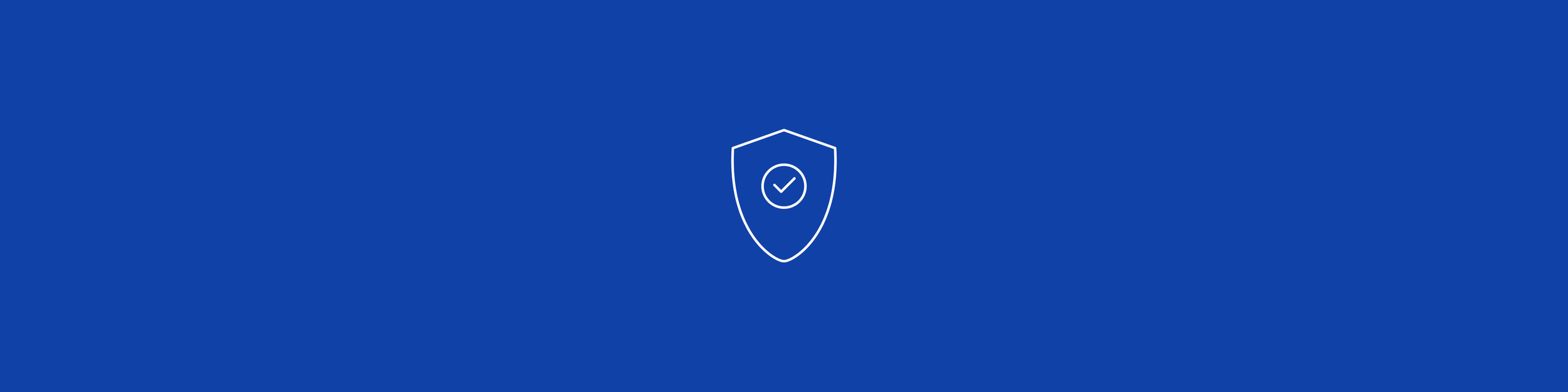 Security Icon.jpg
