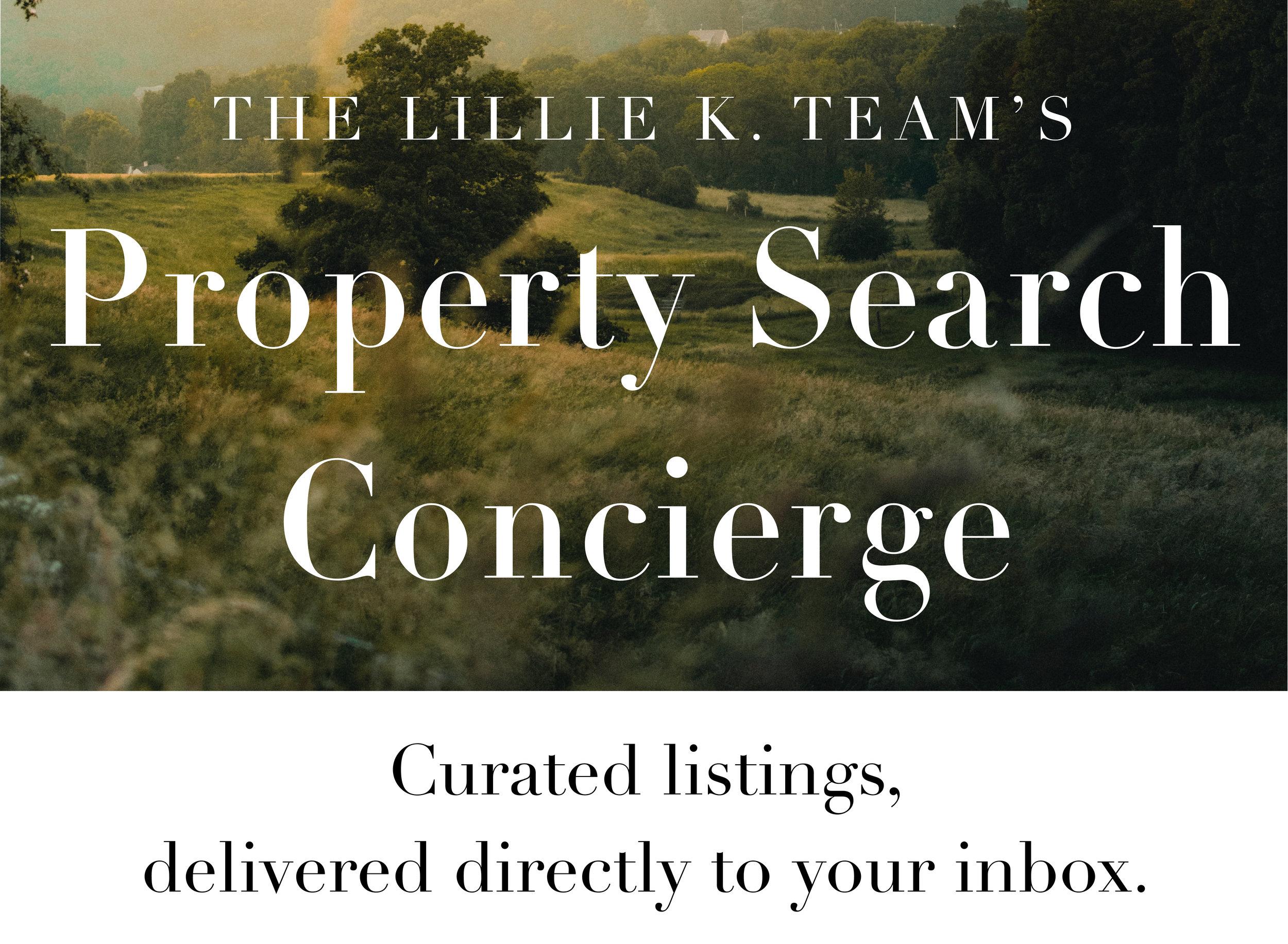 Property Search Concierge Header 3.jpg