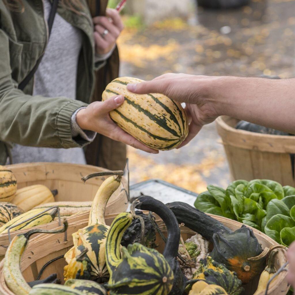 Images via  Kingston Farmers' Market