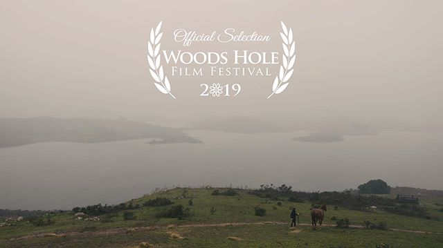 Next up: Massachusetts! Alpha Mare heads to @woodsholefilmfestival on July 27th - August 3rd 🐴