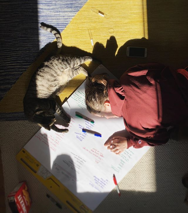 Brainstorming is hard, but Ripley the Cat & Cheez-Its are a big help. #sebastopolsiege