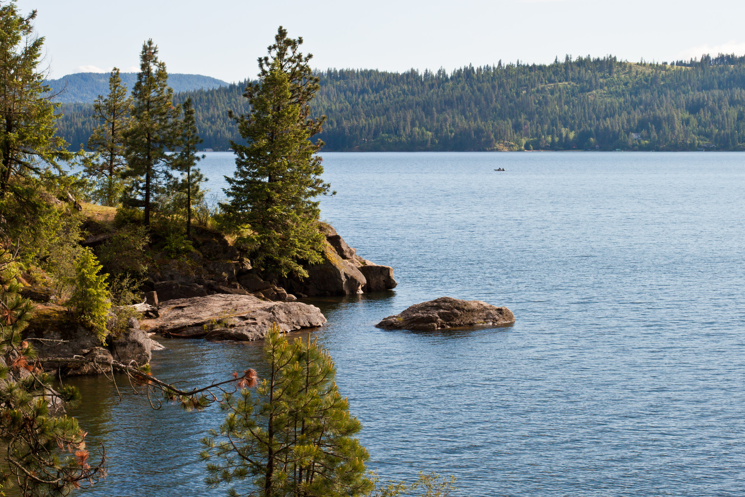 Coeur d'alene lake with trees.
