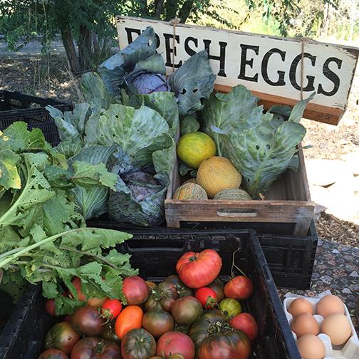 Three-Leaf-Farm-Dinner-Farm-Stand.jpg
