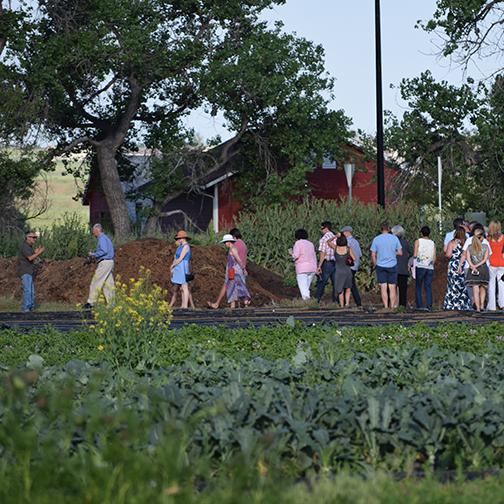 Three-Leaf-Farm-Dinner-Farm-Tour2.jpg
