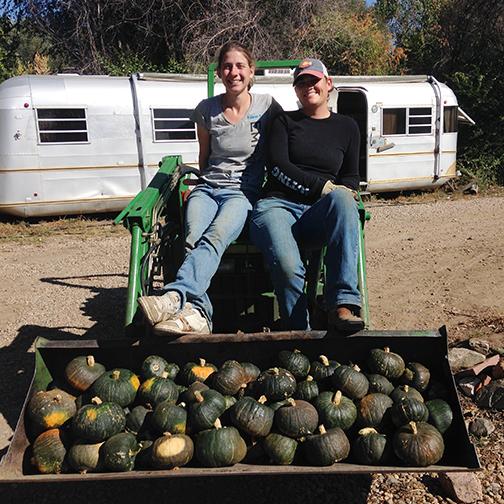 Three-Leaf-Farm-Dinner-Farm-Tractor-girls.jpg