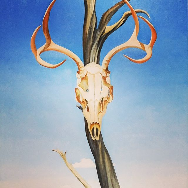 "Come paint, learn and enjoy all that is Georgia O'Keeffe in the land of enchantment with us! ""Deer's Skull with Pedernal"" accurately depicts the big blue skies of New Mexico that you don't want to miss seeing during Georgia's Muse this September!You'll notice in this painting that the skull hangs on a weathered pinõn tree. Have you ever had roasted pinõn?  Fun Fact: On the back of this canvas was a star, which was a personal code that O'Keefe used when she was pleased with the way a work had turned out. Painted in 1936, it has now been donated to the @mfaboston collection.  #georgiaokeeffe #artworkshop #travel #artistsoninstagram #getaway #experience #ghostranch #arttravel #artclasses #artlessons #artretreat #learnsomething #desertart #womeninart #getoutsideandplay #pinon #newmexicoartist #paintwithme #paintingworkshops #newmexicoart #travelandpaint #desertartist #torontoartscene #paintmore #getoutsidemore #GOKM #artistsretreat #okeeffeinspired"