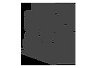 CAPI logo.png