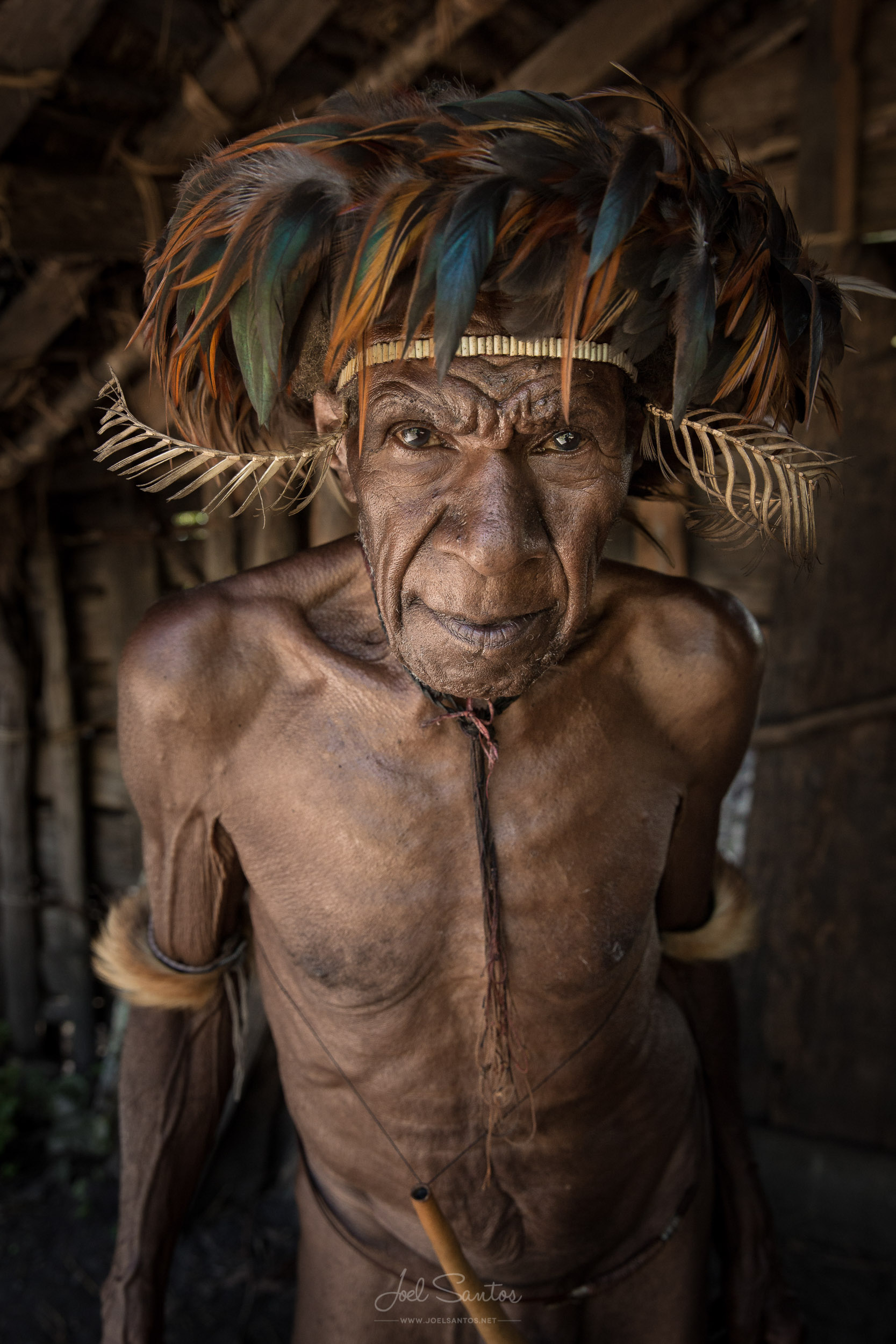 Dani Tribe Warrior, Baliem Valley, West Papua, Indonesia