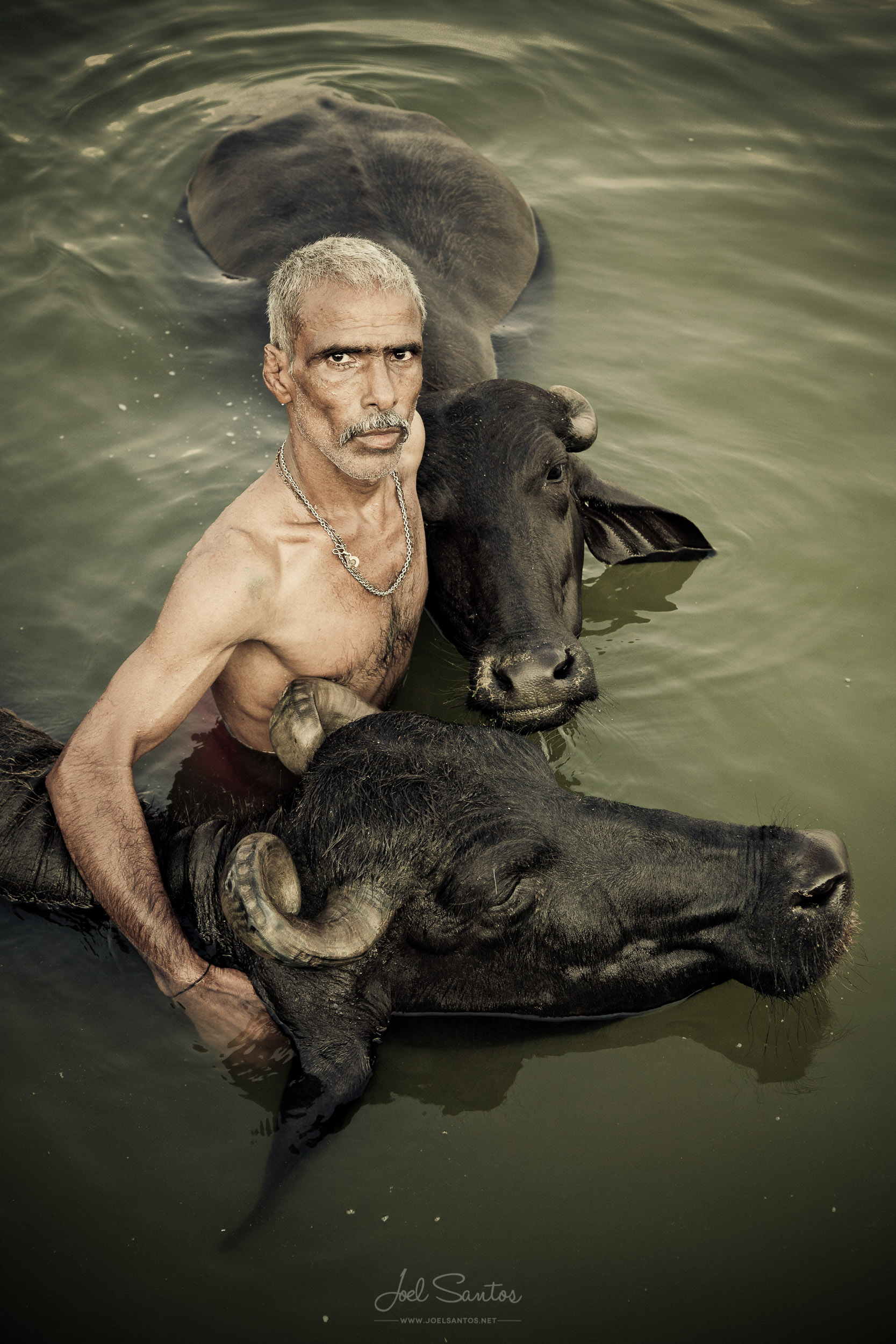 Buffalo Herder, Ganges, Varanasi, India