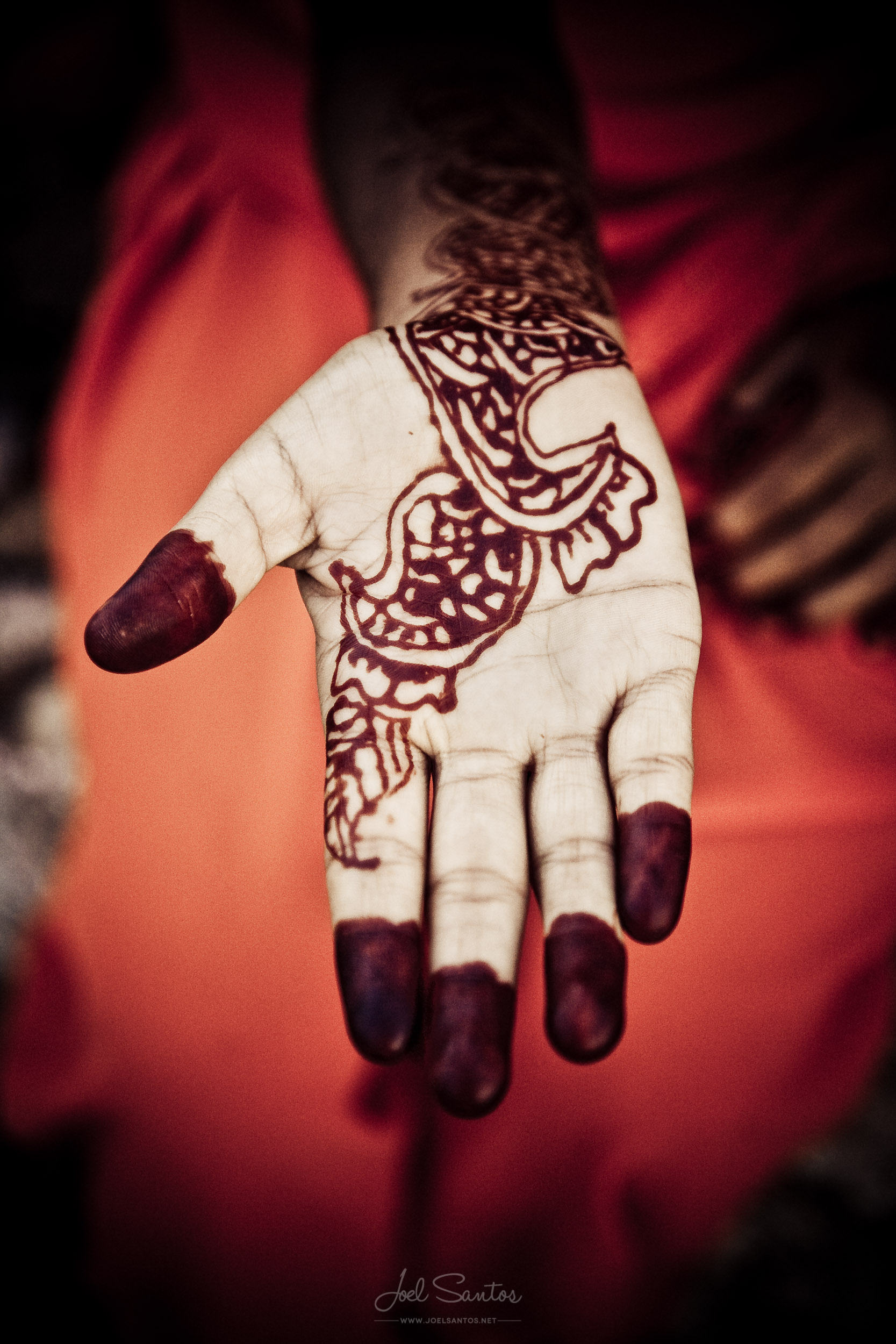 Henna Painted Hand, Jaipur, India
