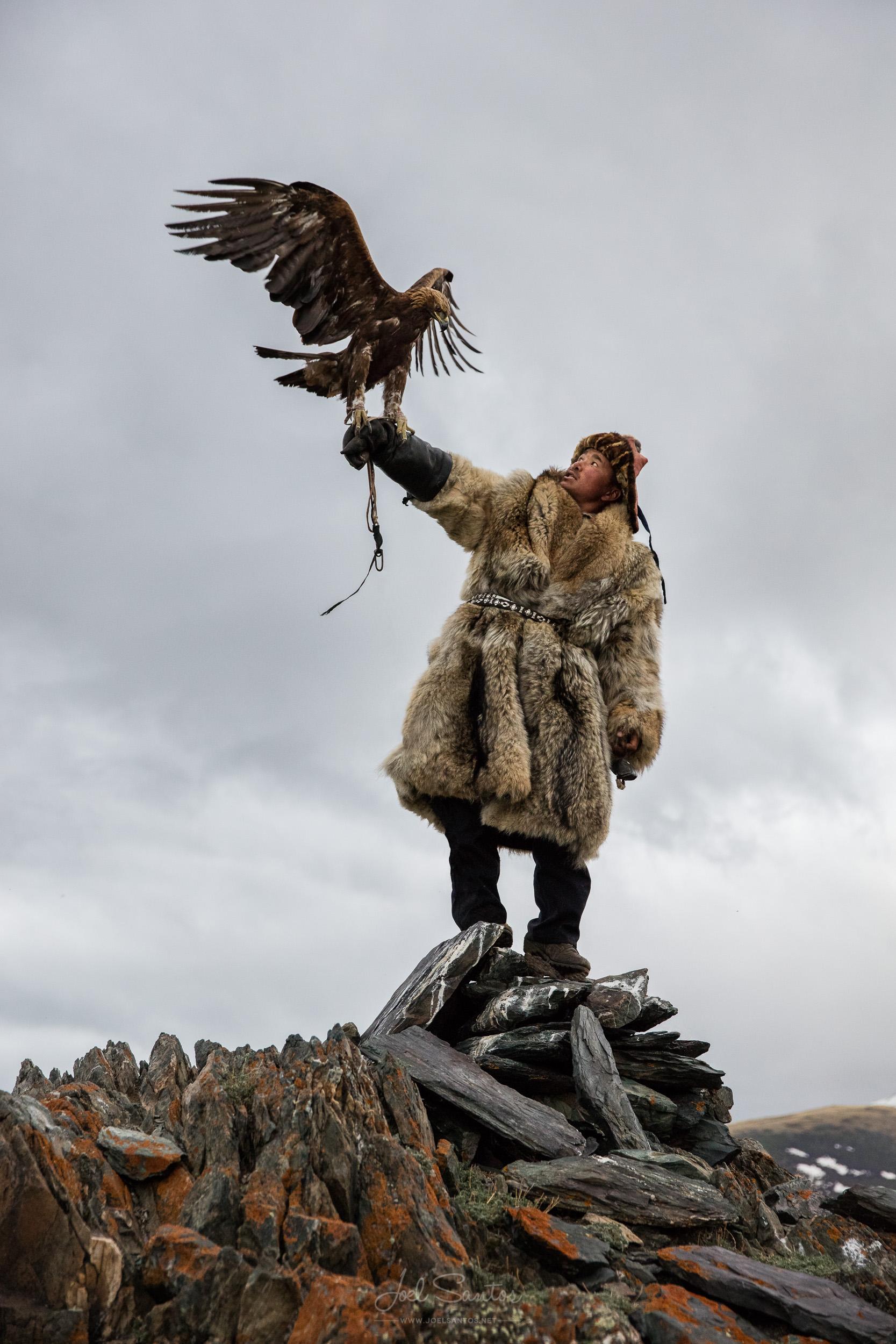 Shokhan, Eagle Hunter, Altai, Western Mongolia