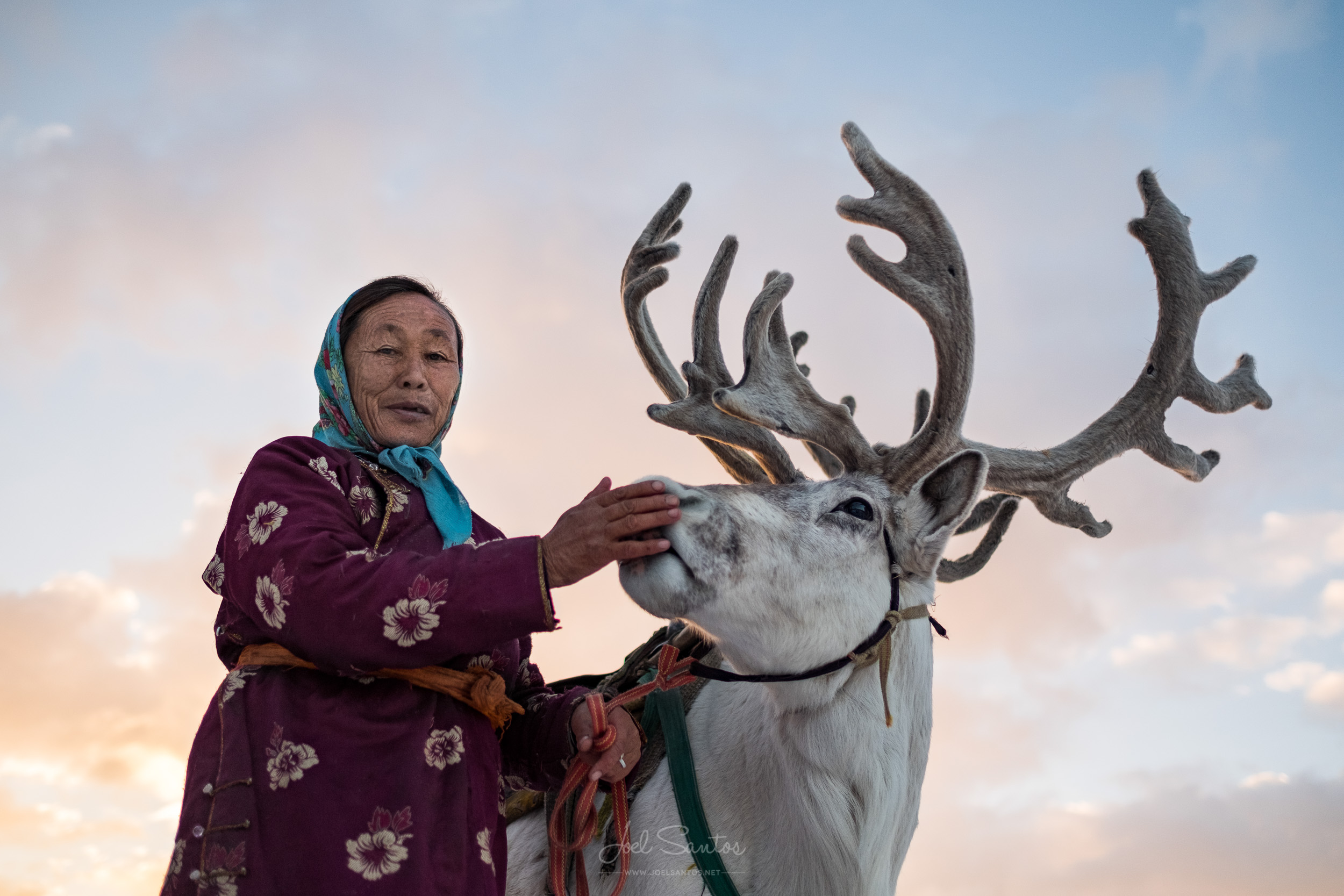 Tsaatan (Reindeer people), also Dukha, Dukhans or Duhalar,northe