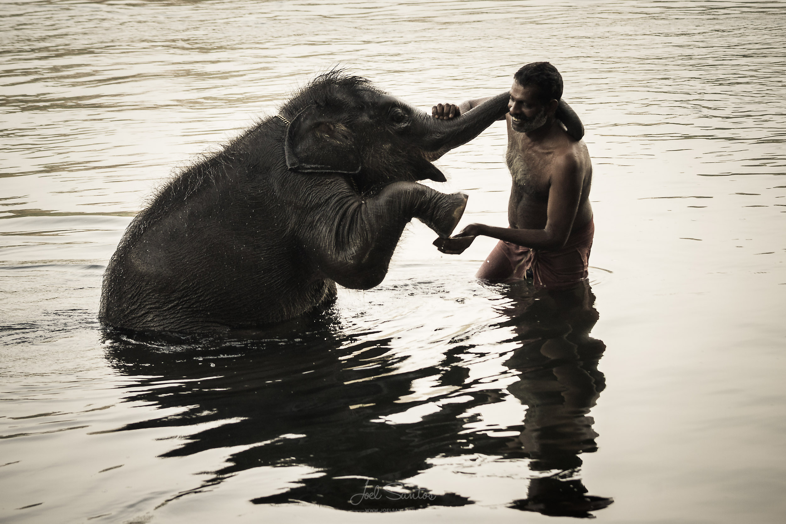 Elephant Orphan and his caretaker, Kerala, India