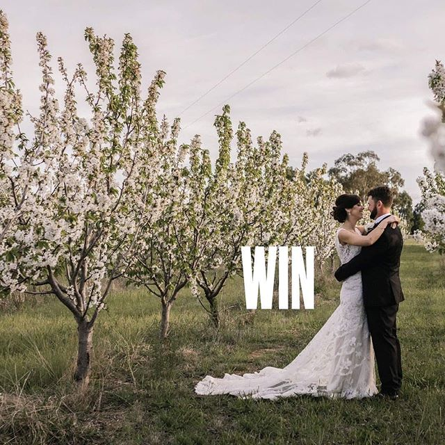 Win your dream wedding! 💒💕 Don't miss out on the chance to win one of 3 weddings at Blue Wren Farm, Mudgee. Enquire today, come and visit, secure your dates with a $2,000 deposit and you are in the running to win your dream day. Terms apply.