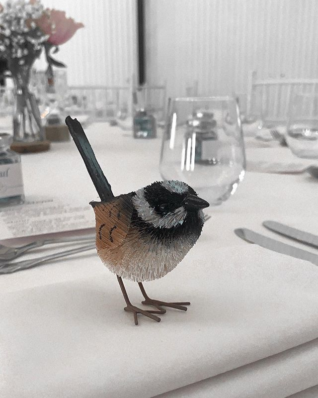 At last weekends wedding, our tables were decorated with these gorgeous little Wren's! The perfect match for our venue. What an amazing night, a big congratulations to the happy couple Angela and Neil!💫