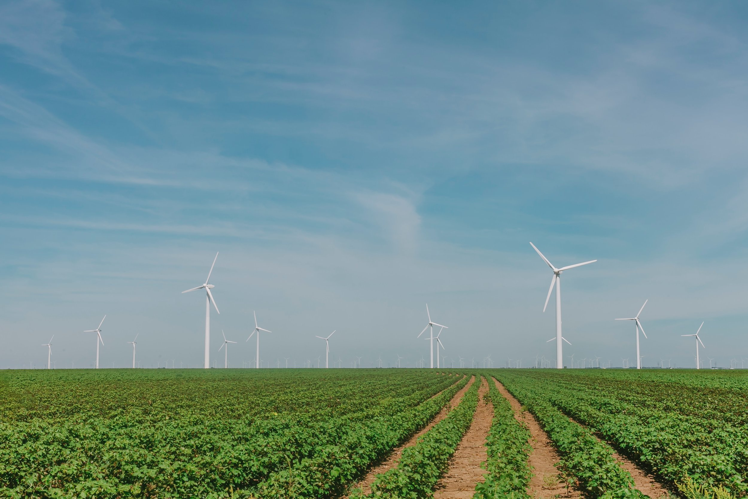 1.8 million tonnes of C02 was averted thanks to Portugal's renewable energy production