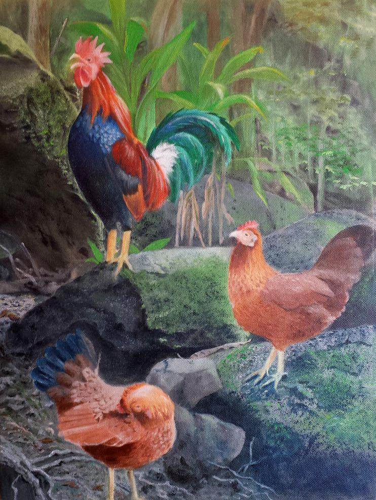 Kauai Family