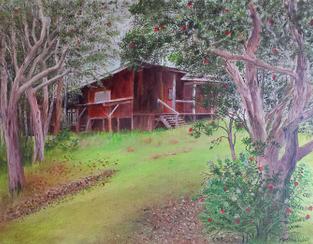 Saddle House Mauna Kea